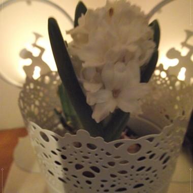 Takie małe aranżacje świąteczne  poczynione&#x3B;