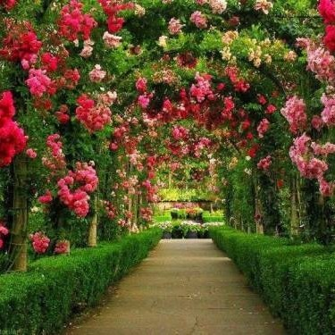 Ogrody marzeń
