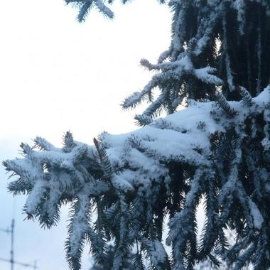 Zima nad morzem .....i sztorm na Bałtyku..........