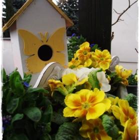 Wszelkie cudowności budzenia się wiosny&#x3B;