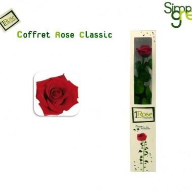 Nowe propozycje Flower Box