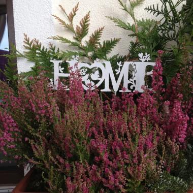 Jesień w tym roku szybko nadeszła. Jednak powinniśmy cieszyć się ostatnimi ciepłymi dniami. Ja dziś miałam szczęście, bo pogoda dopisała i spędziłam dużo czasu w ogrodzi i na tarasie, który trochę udekorowałam.
