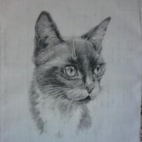 """grafika na bawełnie """"koty"""""""