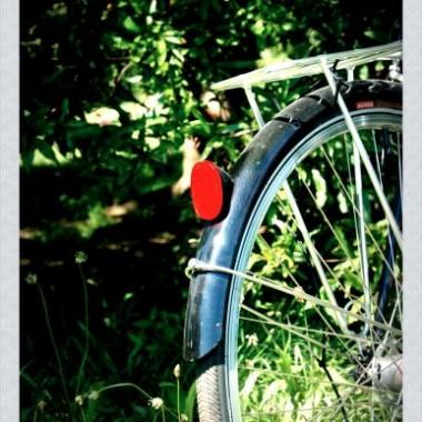 Nie ma chyba nic lepszego , jak swiadomość, że  ten własnie budzący się do życia dzień, pełen śpiewu ptaków i szumu drzew, bedzie jednym z najbardziej udanych...a to za sprawą zwykłej wycieczki rowerowej do parku, w moją ulubioną porę roku i...w ulubionym towarzystwie&#x3B;) miłego ogladania:)