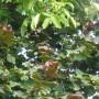 Pozostałe, Letnie klimaty................ - ..............pozdrawiam Was bardzo serdecznie i dużo dobrego życzę :)