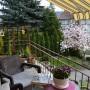 Rośliny, U nas też wiosna:)