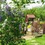 Pozostałe, Wiosna w ogrodzie