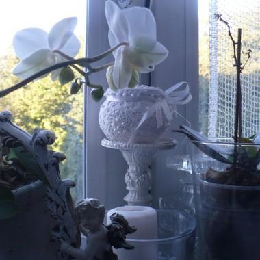 .............i puzderko koronkowe białe..........