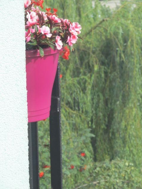 Balkon, balkon @->