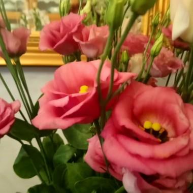 .................i różowo..................