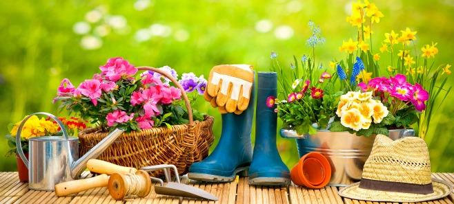 Pielęgnacja ogrodu na wiosnę - jak krok po kroku przygotować ogród na nowy sezon