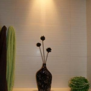 Łazienka o pow.ok 6m2. Nie duża, tylko prysznic, bez wanny  i ...trochę ożywczej zieleni:)