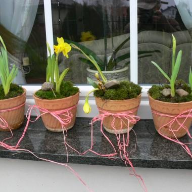 Zaklinamy wiosne