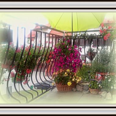 Lipcowy balkon