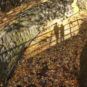 Jesienny przelot&#x3B;):):)