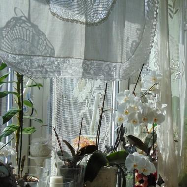 ............i słonko w oknie...........