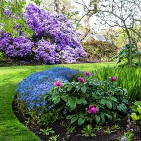 Atrakcyjny ogród przez cały rok