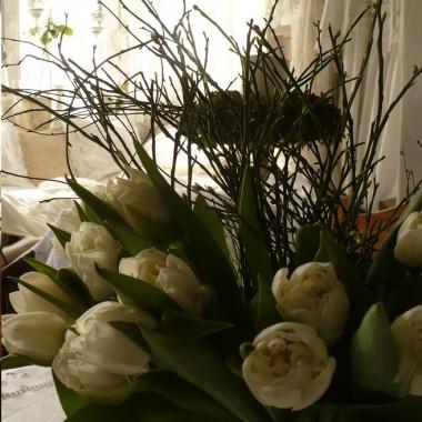 ...............i tulipany...............