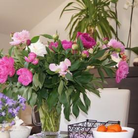 Kwiatki moje kolorowe :-)