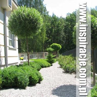 4. Ogród nowoczesny w Hornówku - www.inspiracje.com.pl