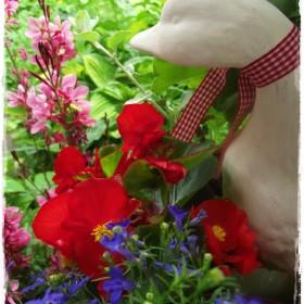 Kwiatowy  czerwiec.