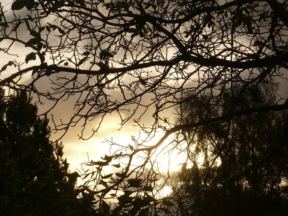 Pozostałe, Jeszcze październik............. - ..............i jesienna fotka..............