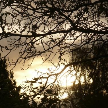 ..............i jesienna fotka..............