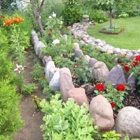 Letni różany malenki ogród .