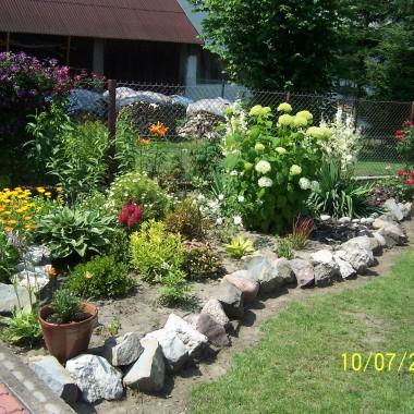 Ogród i jego coroczne przemiany :)