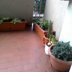 Wiosna na moim balkonie.. :)