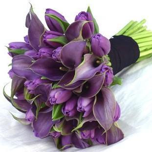 Piękno tulipanów