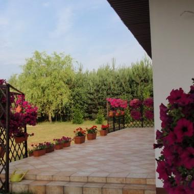 Lato na tarasie i w domku