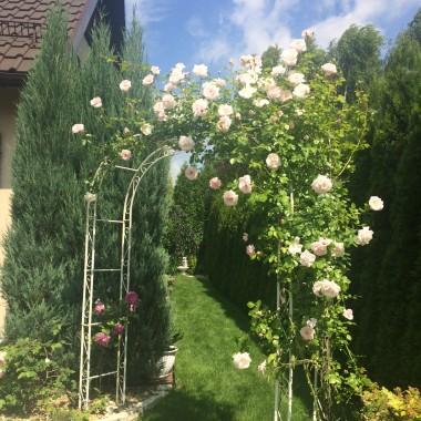 Romantyczny ogród w perspektywie