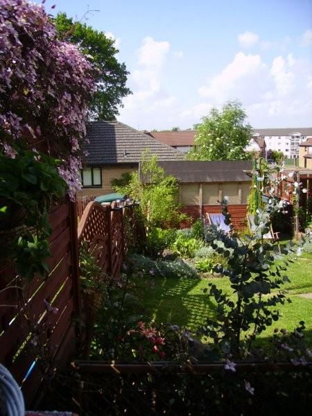 Pozostałe, ....roznosci ogrodowo-domowe...