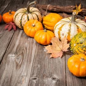 Dekoracje na dobrą jesień