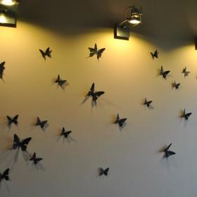 Motylki na ścianę