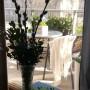 Balkon, Sezon balkonony czas zacząć - A i bazie w salonie wyglądają cudnie