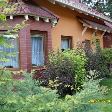 dom i ogród w lipcu 2009