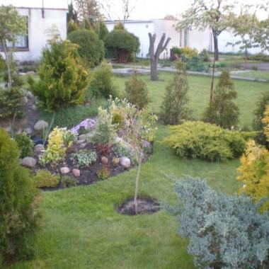 działka- koniec kwietnia...już widać różnorodność kolorów liści...uwielbiam te paski, centki, kropki na liściach...