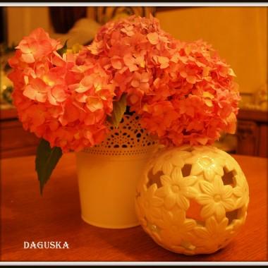 Kwiatowo...