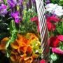 Dekoratorzy, Majowe robótki.................. - ...............i kwiatki.................