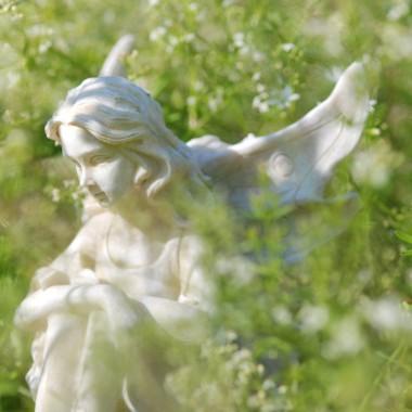 Ogrodowe Anioły (wyszperane w sieci)