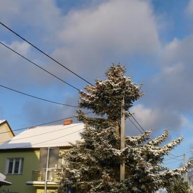 ...............i zimowa fotka................