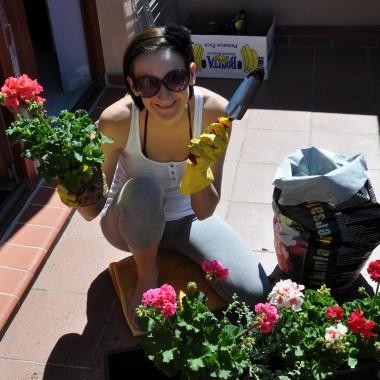 sezon balkonowy czas zaczać &#x3B;-)
