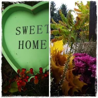 ...to , co jesień daje nam za darmo&#x3B;