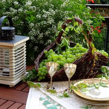 ... na tarasie tego roku, bo chyba trzeba już zamknąć sezon. Zimno, mokro, ponuro, więc galeria na poprawę nastroju. Wspomnienie słonecznych dni.