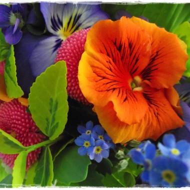 Kwiatki wiosenne w roli głównej