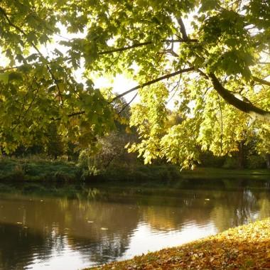 .............i drzewa przeglądają się w wodzie...............