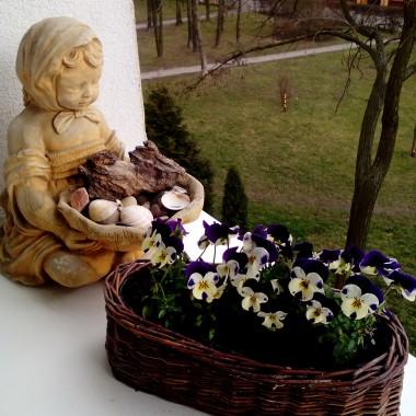Wiosna na moim balkonie :) :)