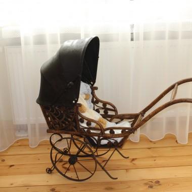 Trochę dziwaczny wózek ale przez to dosyć oryginalny :)